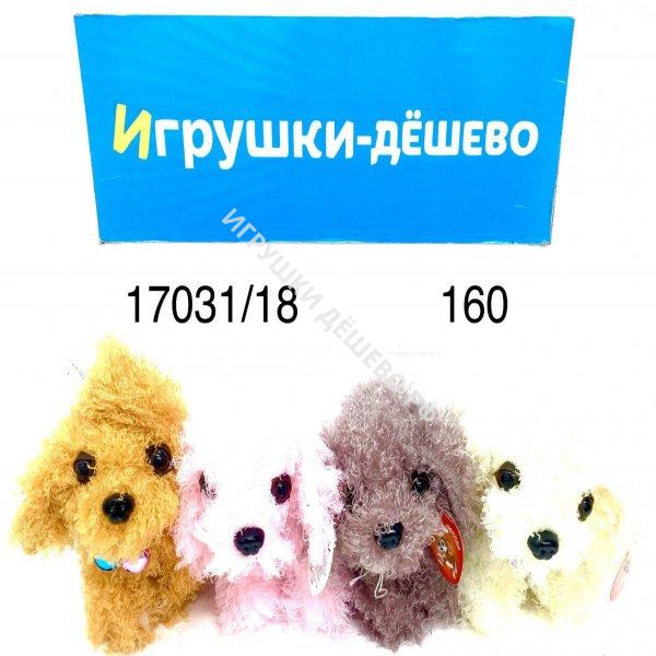 17031/18 Щенок кудрявый (музыкальный) 160 шт в кор. 17031/18