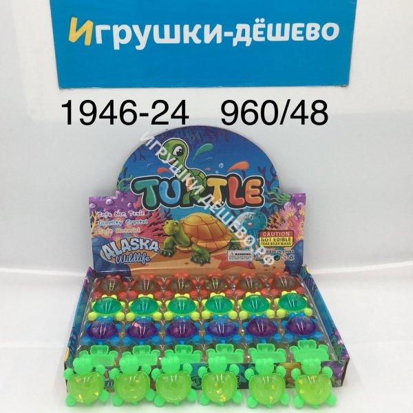 1946-24-960 Лизун Черепашки 48 шт. в блоке, 960 шт. в кор. 1946-24-960